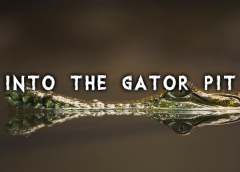 Into the Gator Pit font